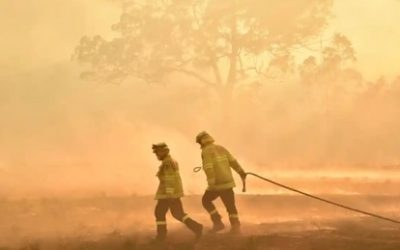 Responding to the Australian Bushfires